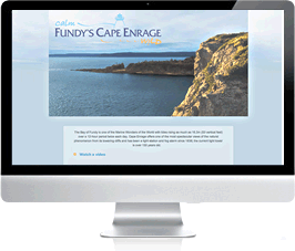 website design moncton